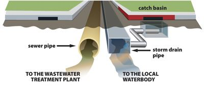 Water and Sewer Pipe Graphic